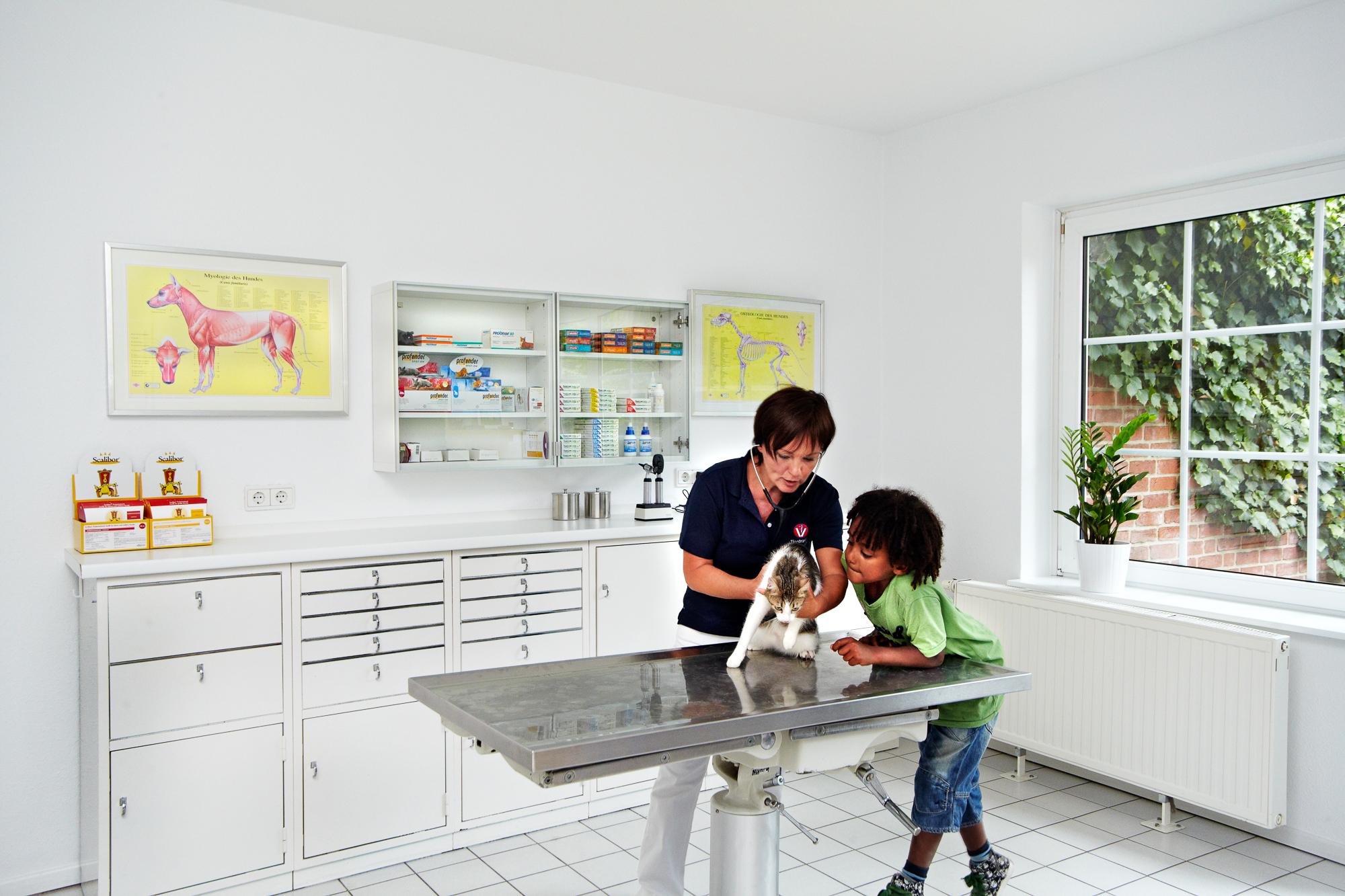 Tierpraxis_untersuchung